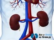 Анемия при хронических заболеваниях почек
